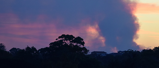 image of dark clouds and trees with smoke from bushfires in the background