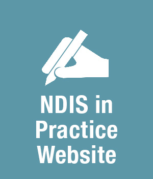 NDIS in practice