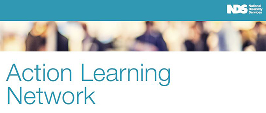 Action Learning Network banner