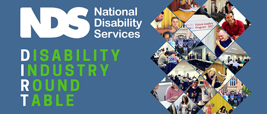 Disability Industry Round table