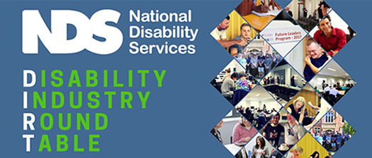 Disability Industry Round Table banner