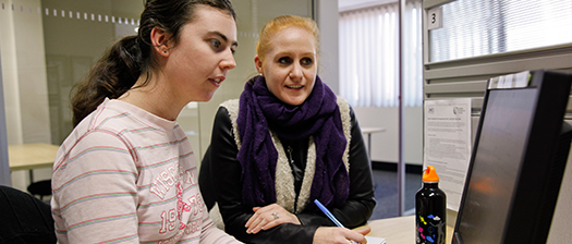 Young person at a computer being supported by carer