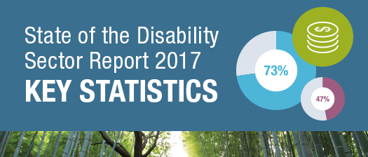 State of the Disability Sector Report 2017 Key Statistics banner