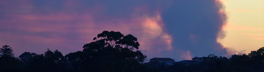 Bushfire smoke in the distance and the silhouette of trees