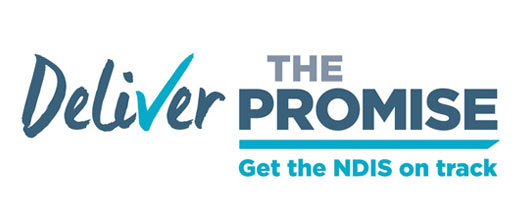 Deliver the Promise campaign banner with text reading 'Get the NDIS on Track' and a blue tick