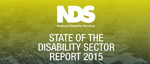 State of Disability Sector Report 2015