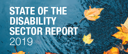 Photo of leaves floating in a pond with text reading 'NDS State of the Disability Sector Report 2019