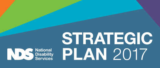 Banner reading NDS strategic plan