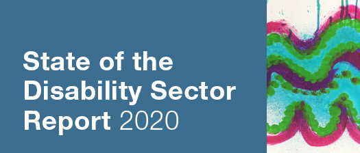 Reads: State of the Disability Sector Report 2020