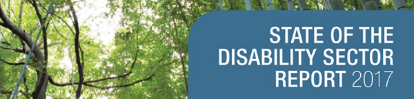 State of the Disability Sector banner
