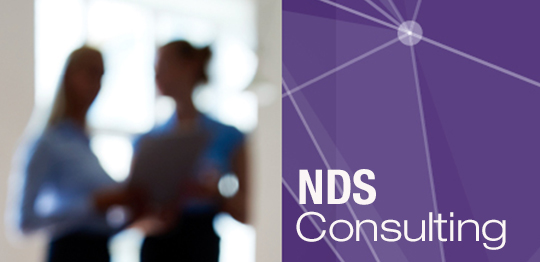 NDS Consultancy banner