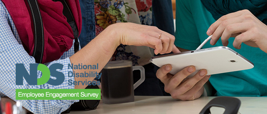 NDS Employee Engagement Survey (EES)