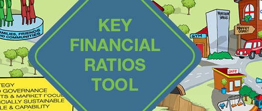 Key Financial Ratios Tool